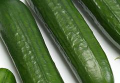 cucumbers thumbnail