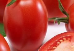 determinate tomatoes thumbnail